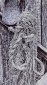 rope sketch